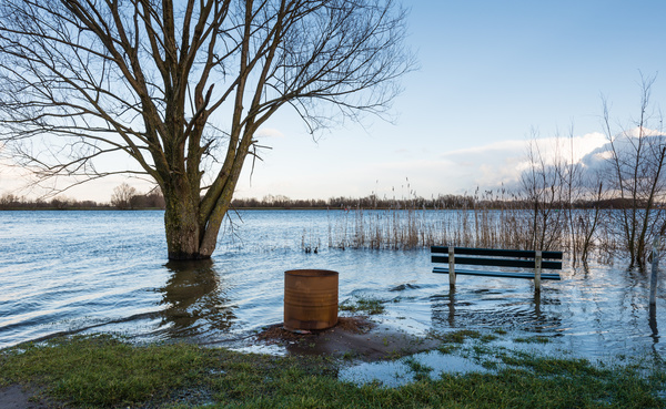 Flood zones rate whether you live in a low, moderate, or high risk area.